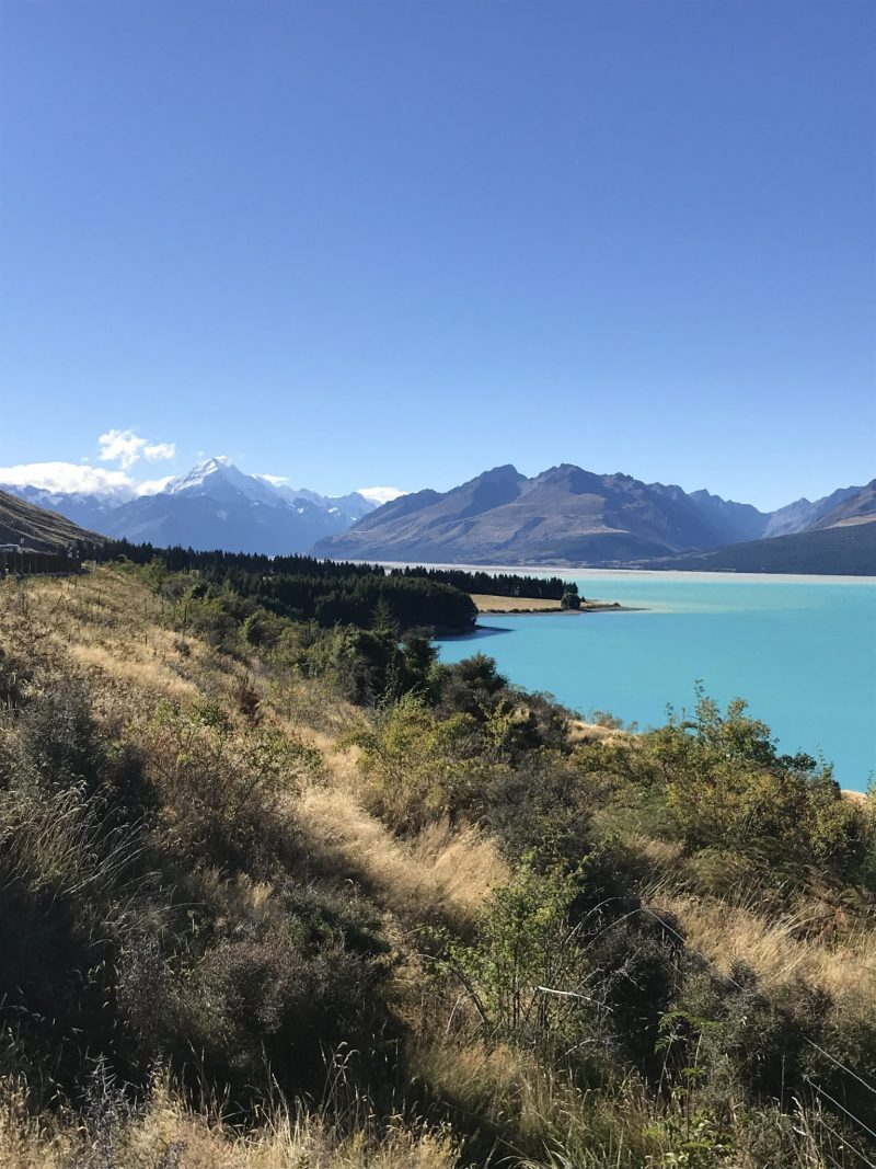 New Zealand Road Trip: Week 4